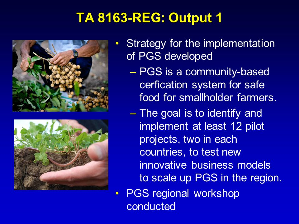 TA 8163-REG: Output 1 Strategy for the implementation of PGS developed –PGS is a community-based cerfication system for safe food for smallholder farm