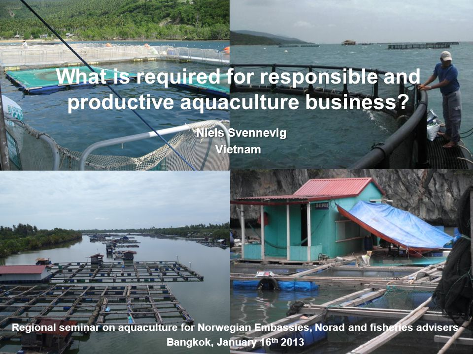 What is required for responsible and productive aquaculture business? Niels Svennevig Niels SvennevigVietnam Regional seminar on aquaculture for Norwe
