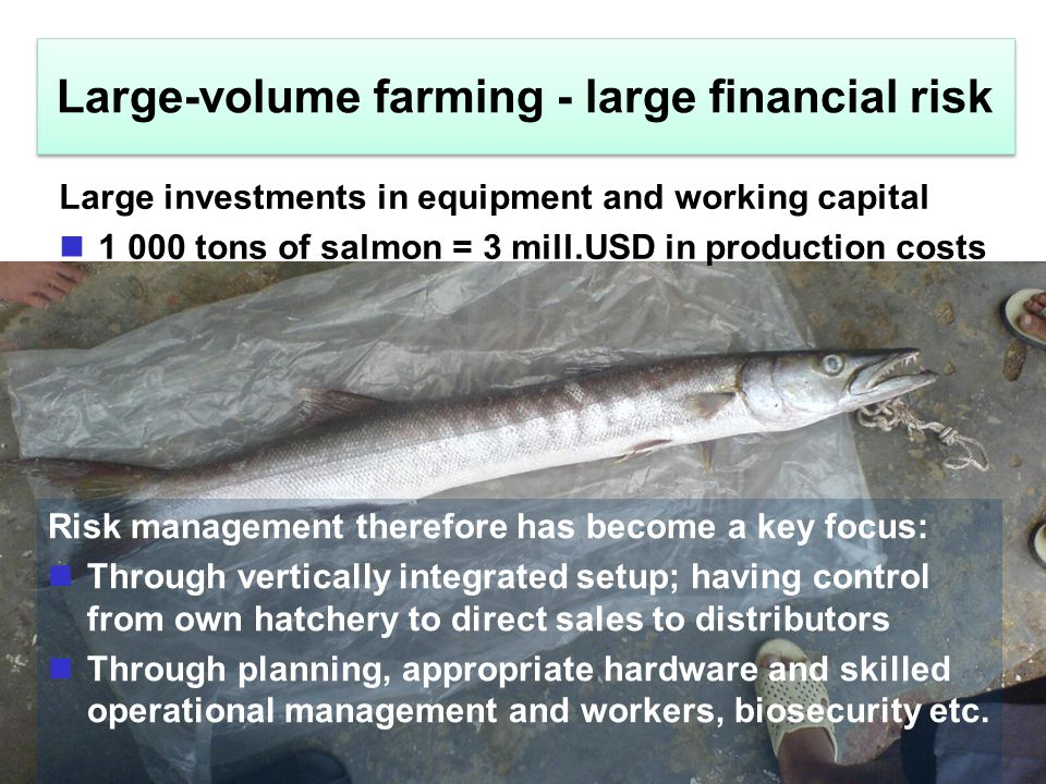 Large-volume farming - large financial risk Risk management therefore has become a key focus: Through vertically integrated setup; having control from