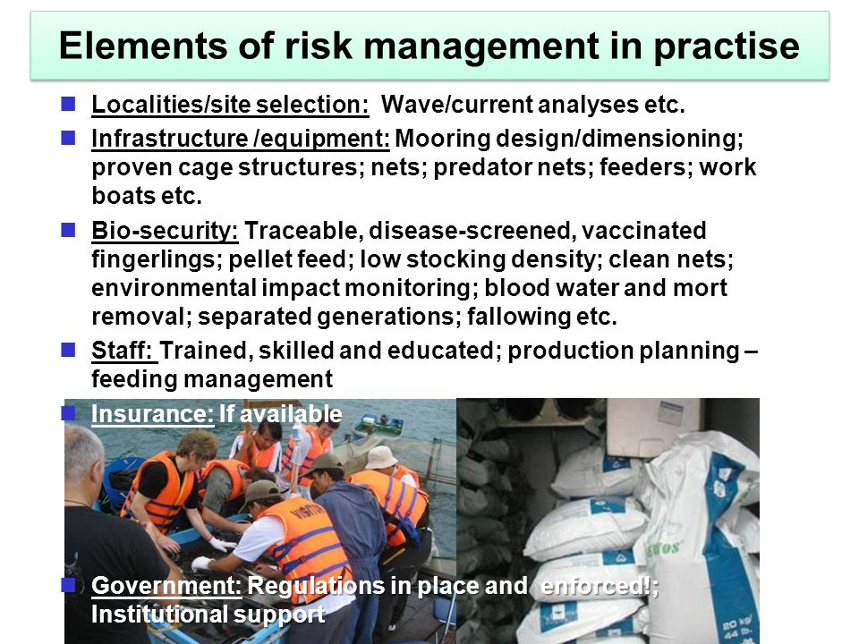 Elements of risk management in practise Localities/site selection: Wave/current analyses etc.