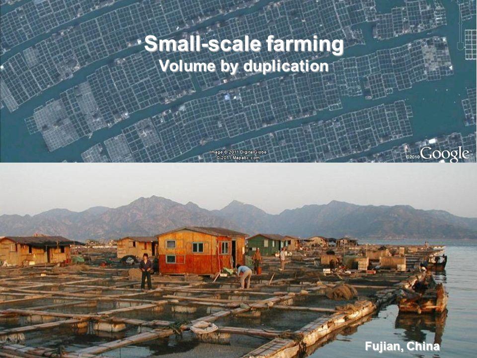 Fujian, China Small-scale farming Volume by duplication
