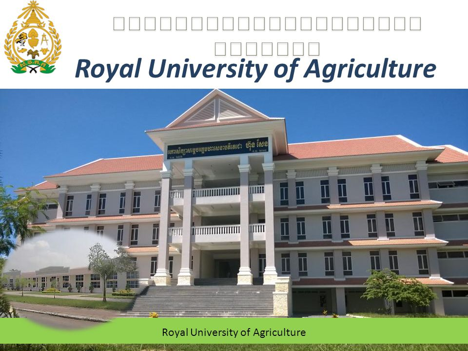 About University The University founded since 1964 Vision: Mission: 2 RUA, as the leading agricultural university in Cambodia, shall progressively achieve an international level of quality in education, research and extensions of agriculture, related sectors and sustainable use of natural resources.