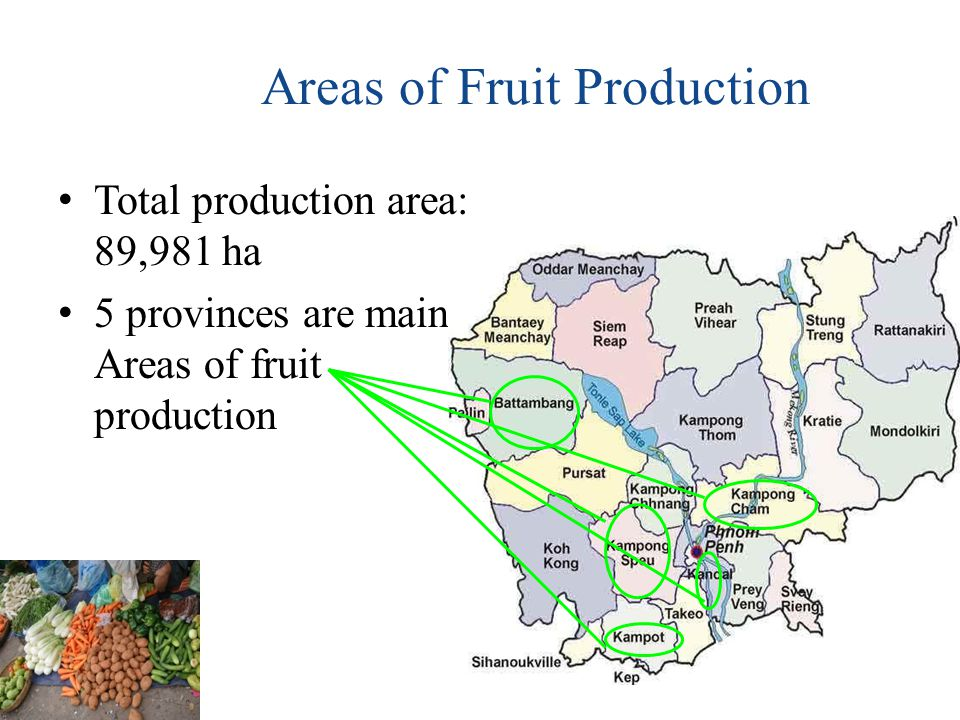 Storage In Cambodia generally improper storage fruits and vegetables.. 30