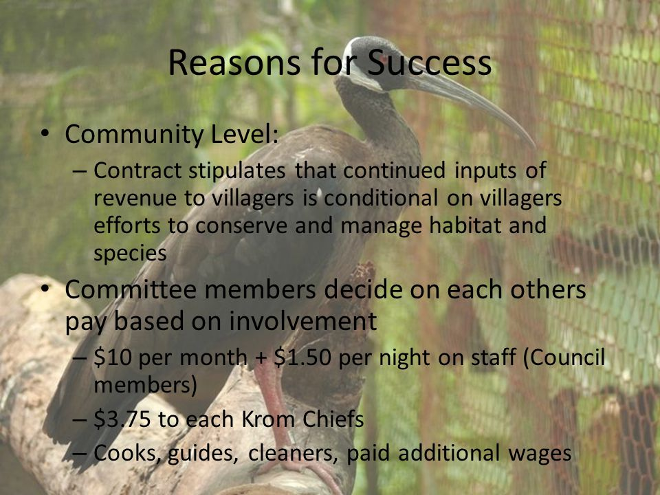 Reasons for Success Community Level: – Contract stipulates that continued inputs of revenue to villagers is conditional on villagers efforts to conserve and manage habitat and species Committee members decide on each others pay based on involvement – $10 per month + $1.50 per night on staff (Council members) – $3.75 to each Krom Chiefs – Cooks, guides, cleaners, paid additional wages