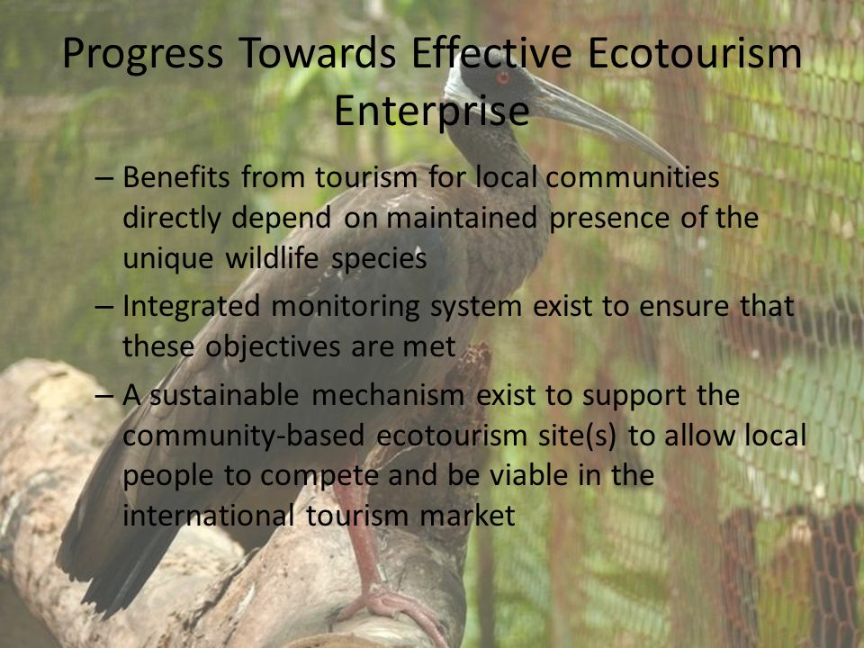 Progress Towards Effective Ecotourism Enterprise – Benefits from tourism for local communities directly depend on maintained presence of the unique wildlife species – Integrated monitoring system exist to ensure that these objectives are met – A sustainable mechanism exist to support the community-based ecotourism site(s) to allow local people to compete and be viable in the international tourism market