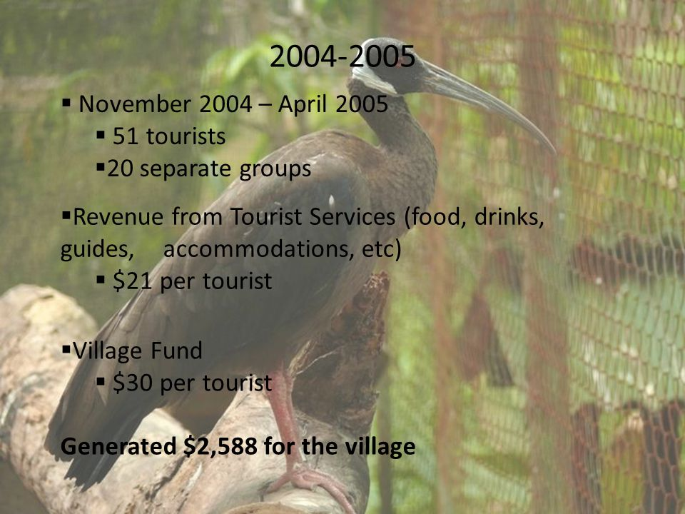 2004-2005  November 2004 – April 2005  51 tourists  20 separate groups  Revenue from Tourist Services (food, drinks, guides, accommodations, etc)  $21 per tourist  Village Fund  $30 per tourist Generated $2,588 for the village