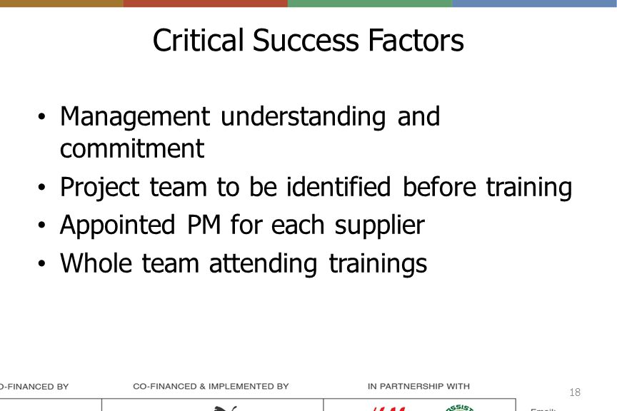 Critical Success Factors Management understanding and commitment Project team to be identified before training Appointed PM for each supplier Whole team attending trainings 18