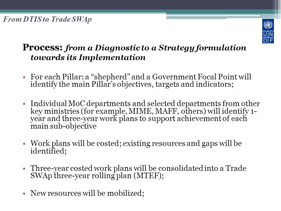 """Process: from a Diagnostic to a Strategy formulation towards its Implementation For each Pillar: a """"shepherd"""" and a Government Focal Point will identi"""