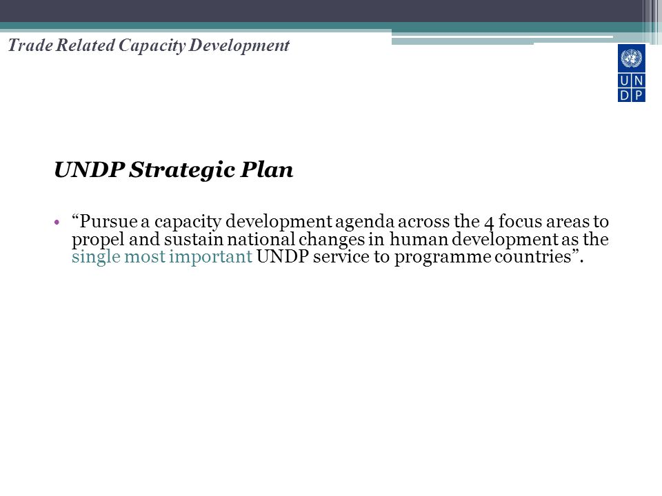 """UNDP Strategic Plan """"Pursue a capacity development agenda across the 4 focus areas to propel and sustain national changes in human development as the"""