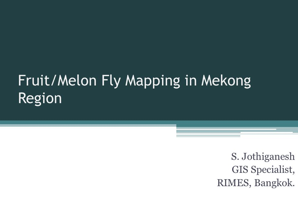 Fruit/Melon Fly Mapping in Mekong Region S. Jothiganesh GIS Specialist, RIMES, Bangkok.