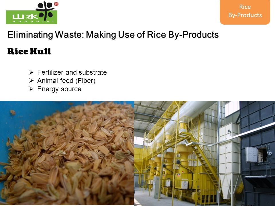 20 Eliminating Waste: Making Use of Rice By-Products Rice Hull  Fertilizer and substrate  Animal feed (Fiber)  Energy source Rice By-Products