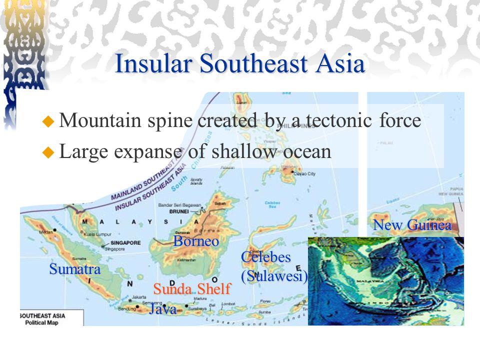 Insular Southeast Asia Borneo Sumatra Java Celebes (Sulawesi) New Guinea Sunda Shelf  Mountain spine created by a tectonic force  Large expanse of shallow ocean