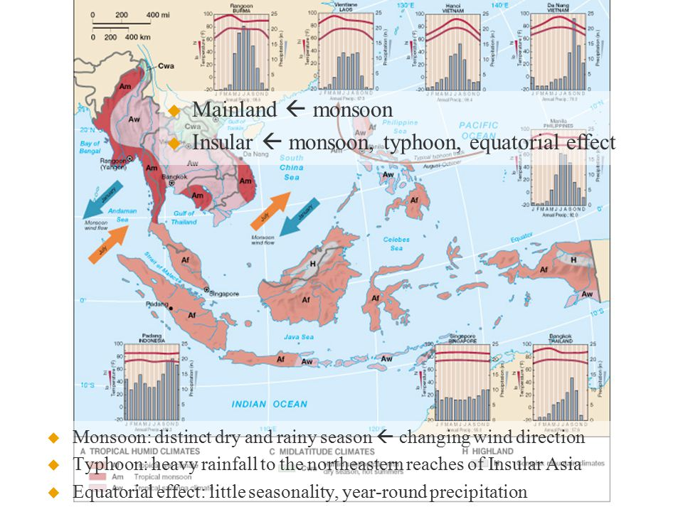   Mainland  monsoon   Insular  monsoon, typhoon, equatorial effect  Monsoon: distinct dry and rainy season  changing wind direction  Typhoon: heavy rainfall to the northeastern reaches of Insular Asia  Equatorial effect: little seasonality, year-round precipitation
