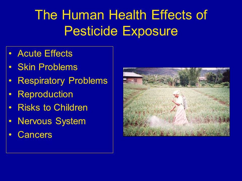 The Human Health Effects of Pesticide Exposure Acute Effects Skin Problems Respiratory Problems Reproduction Risks to Children Nervous System Cancers