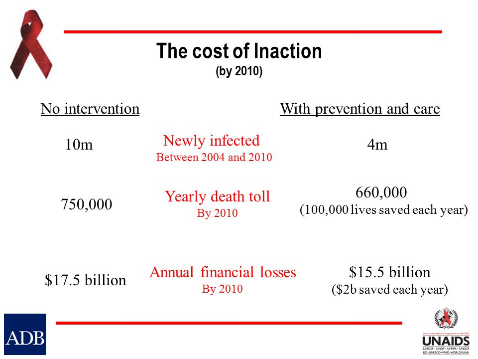 The cost of Inaction (by 2010) 10m4m Newly infected Between 2004 and 2010 Yearly death toll By 2010 Annual financial losses By 2010 750,000 No interventionWith prevention and care $17.5 billion 660,000 (100,000 lives saved each year) $15.5 billion ($2b saved each year)