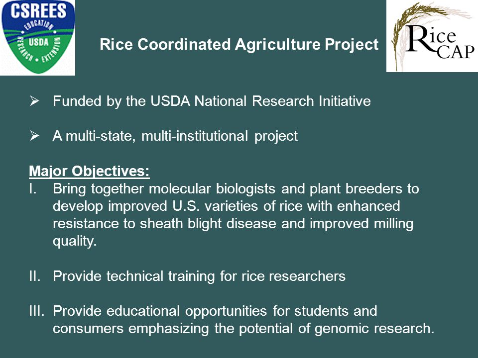 Rice Coordinated Agriculture Project  Funded by the USDA National Research Initiative  A multi-state, multi-institutional project Major Objectives: I.Bring together molecular biologists and plant breeders to develop improved U.S.