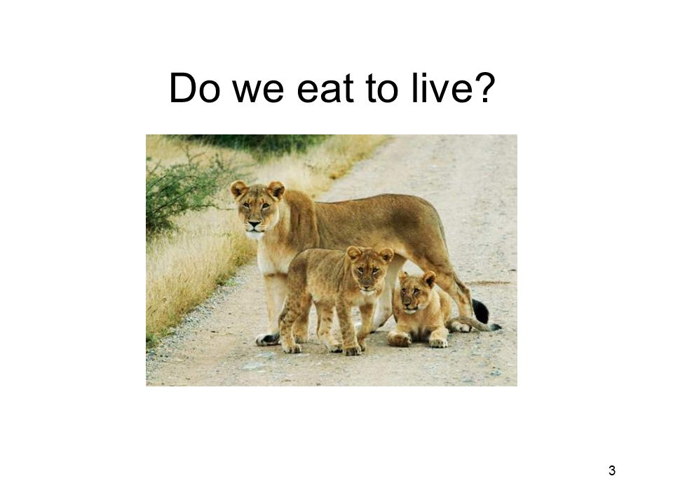 Do we eat to live 3