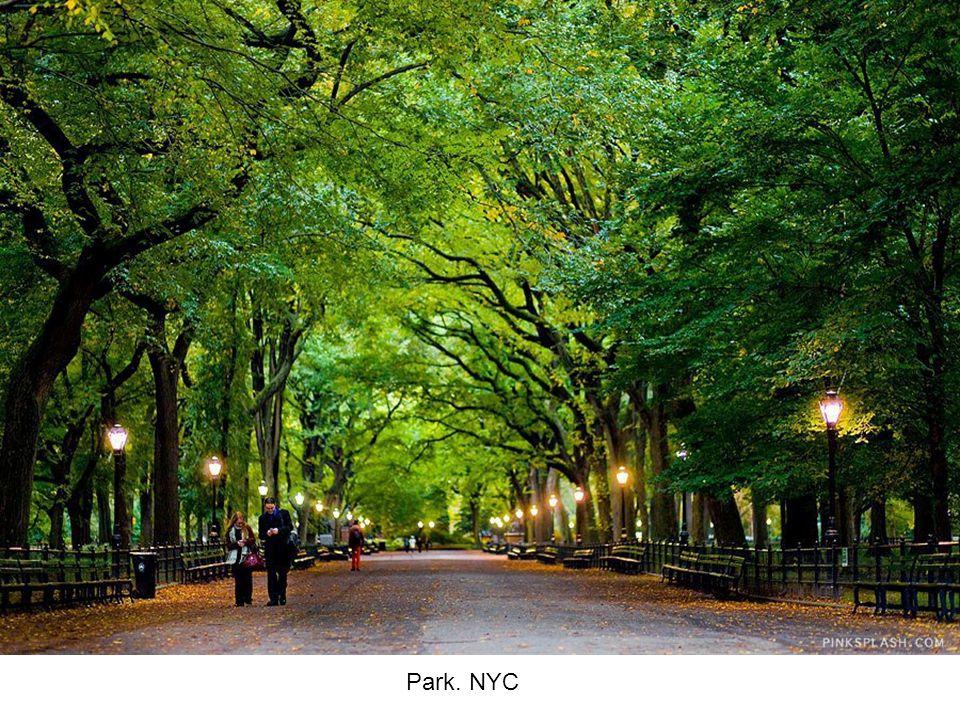 Park. NYC