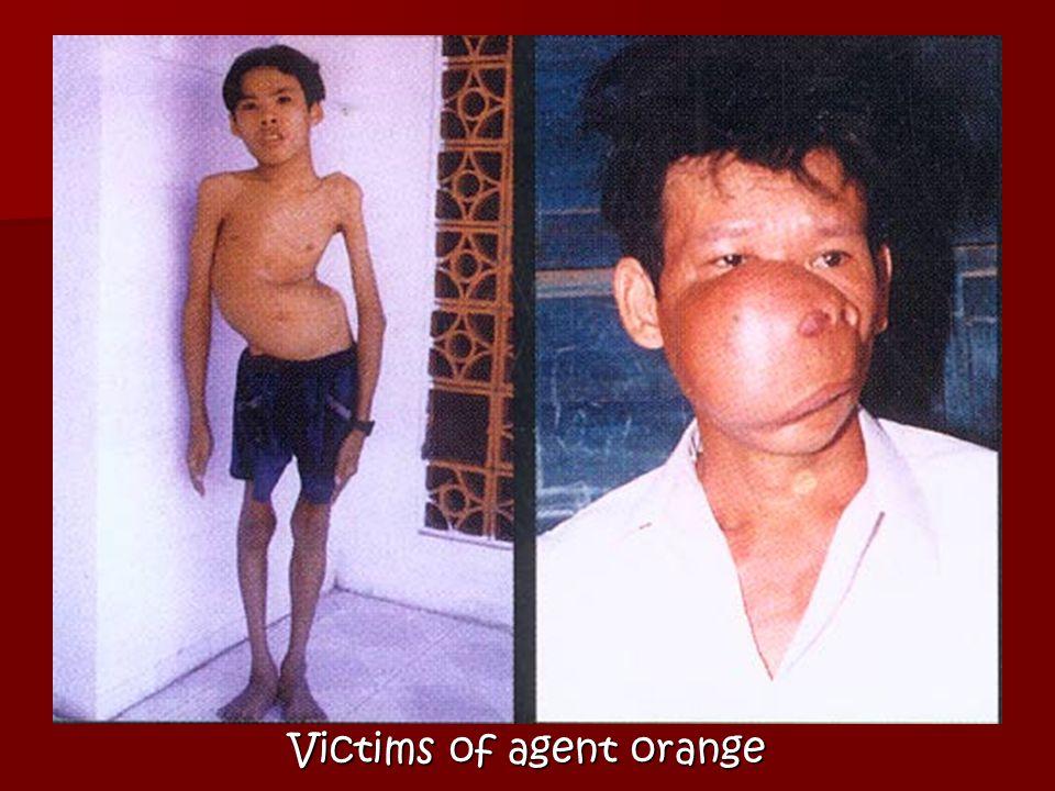 Agent Orange Destruction