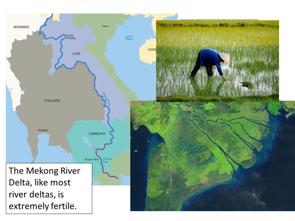 The Mekong River flows through all these Southeast Asian nations. The Mekong River Delta, like most river deltas, is extremely fertile.