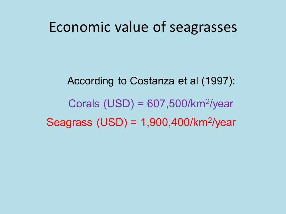 Economic value of seagrasses According to Costanza et al (1997): Seagrass (USD) = 1,900,400/km 2 /year Corals (USD) = 607,500/km 2 /year
