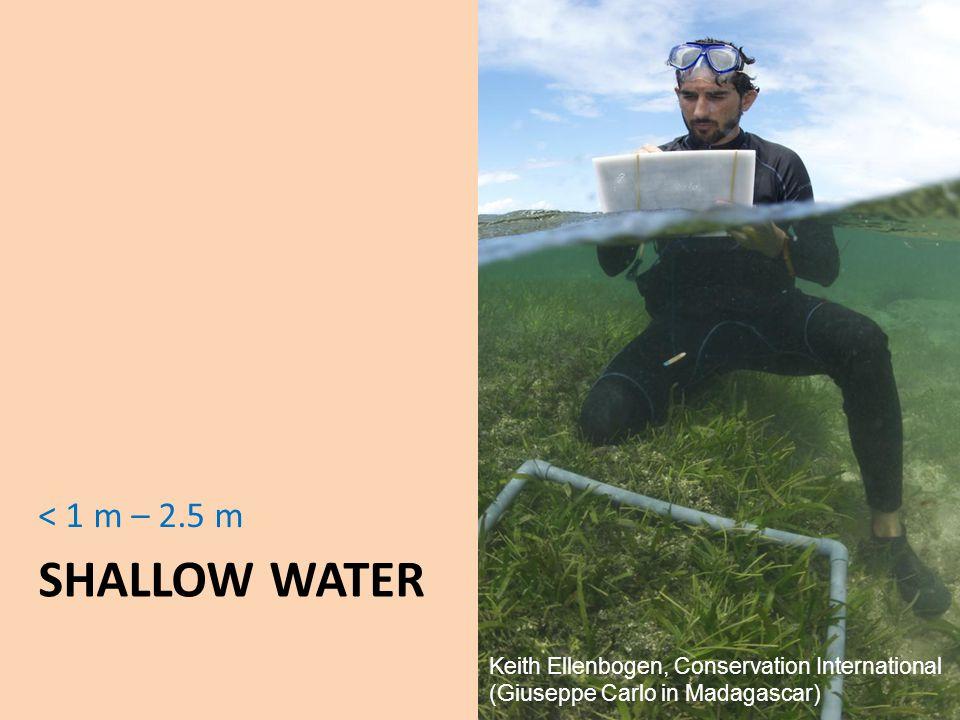 SHALLOW WATER < 1 m – 2.5 m Keith Ellenbogen, Conservation International (Giuseppe Carlo in Madagascar)