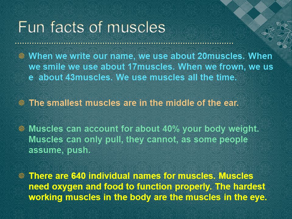  When we write our name, we use about 20muscles. When we smile we use about 17muscles.