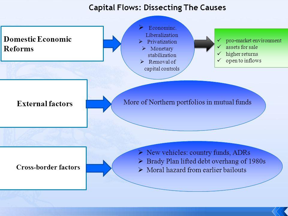 Capital Flows: Dissecting The Causes Domestic Economic Reforms External factors Cross-border factors  Econominc.