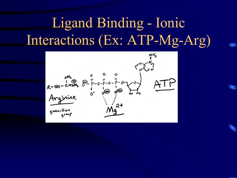 Ligand Binding - Ionic Interactions (Ex: ATP-Mg-Arg)