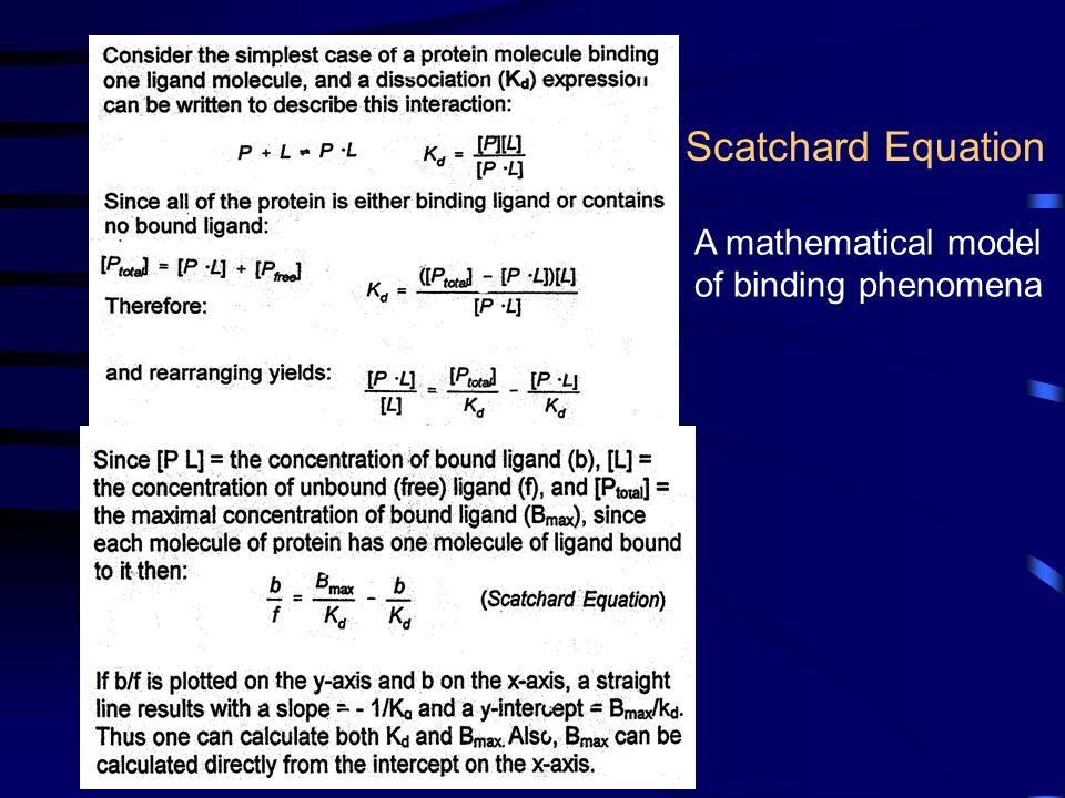 Scatchard Equation A mathematical model of binding phenomena