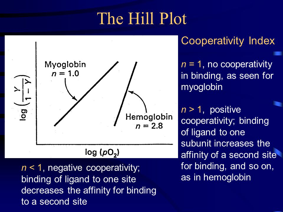 The Hill Plot Cooperativity Index n = 1, no cooperativity in binding, as seen for myoglobin n > 1, positive cooperativity; binding of ligand to one subunit increases the affinity of a second site for binding, and so on, as in hemoglobin n < 1, negative cooperativity; binding of ligand to one site decreases the affinity for binding to a second site
