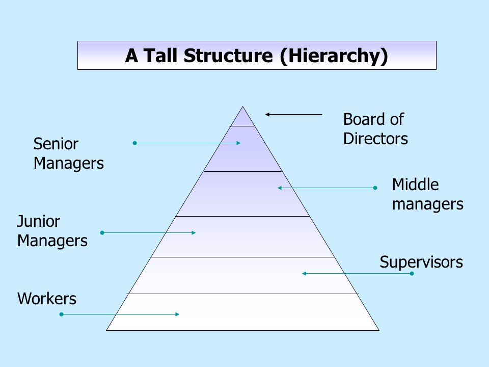 A Tall Structure (Hierarchy) Senior Managers Middle managers Junior Managers Supervisors Workers Board of Directors