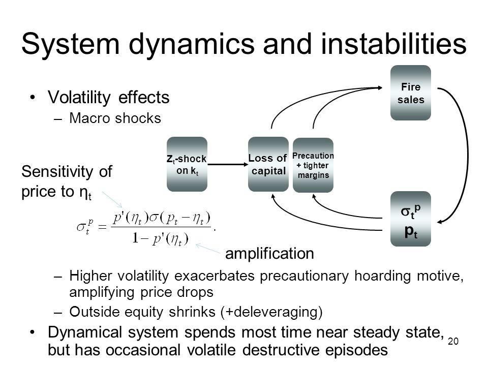 System dynamics and instabilities Volatility effects –Macro shocks –Higher volatility exacerbates precautionary hoarding motive, amplifying price drop