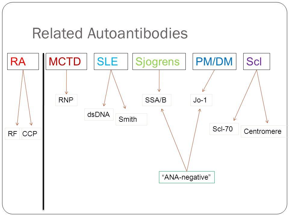 "Related Autoantibodies RAMCTDSLEPM/DMSclSjogrens dsDNA Smith RNPSSA/BJo-1 Scl-70 Centromere RFCCP ""ANA-negative"""