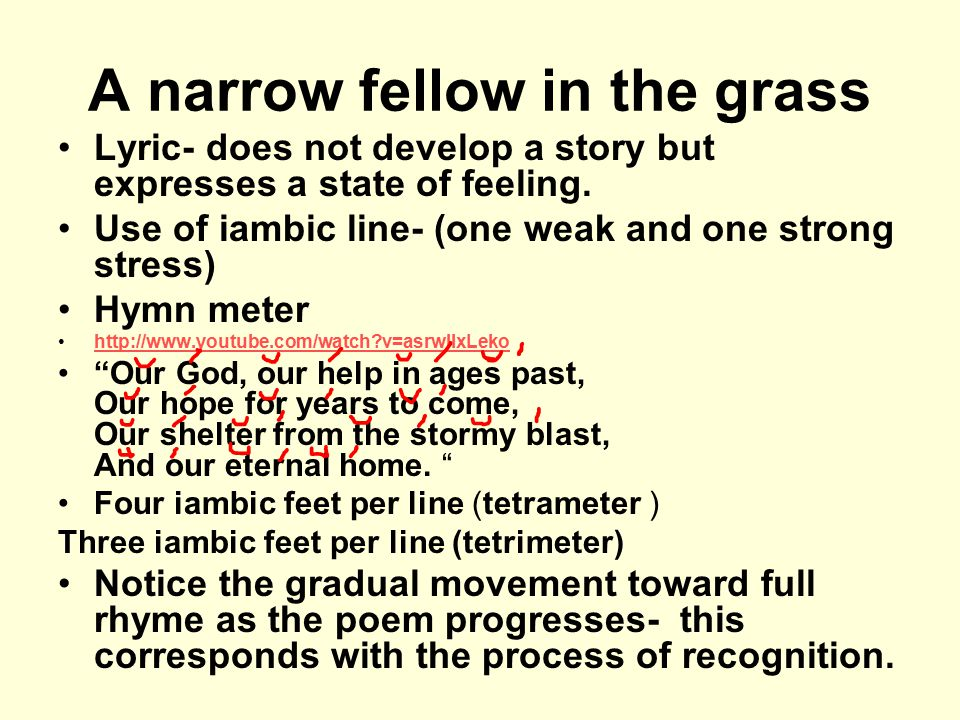 A narrow fellow in the grass Lyric- does not develop a story but expresses a state of feeling. Use of iambic line- (one weak and one strong stress) Hy