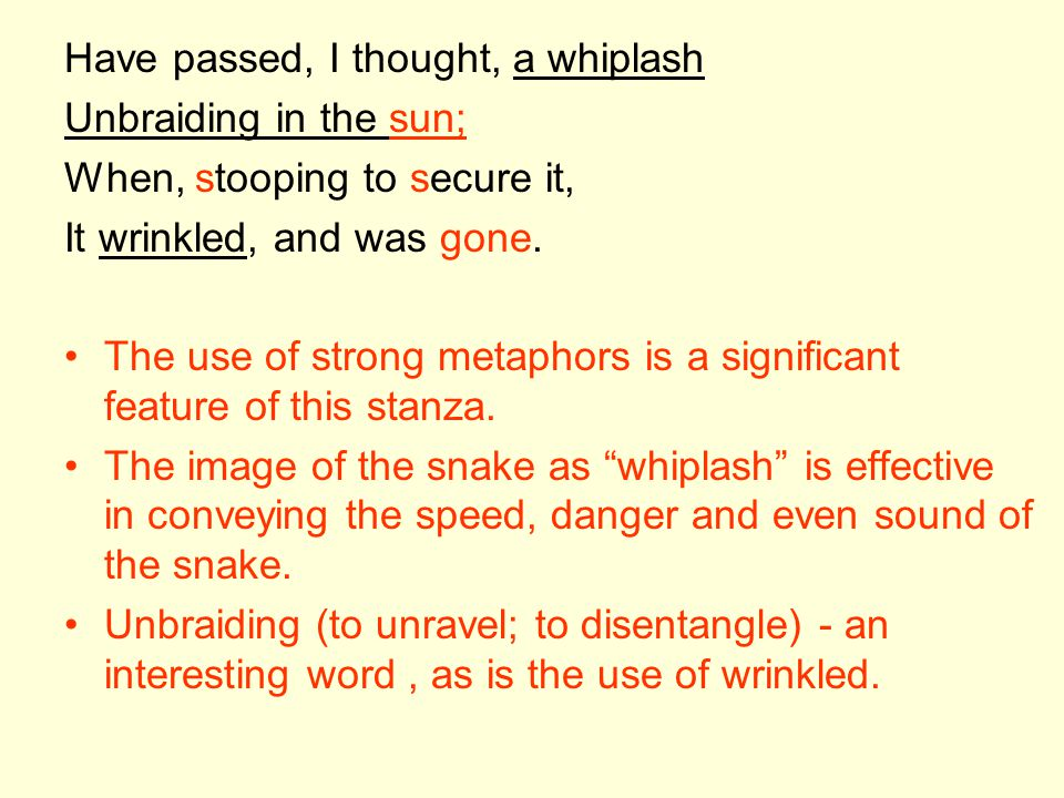Have passed, I thought, a whiplash Unbraiding in the sun; When, stooping to secure it, It wrinkled, and was gone. The use of strong metaphors is a sig