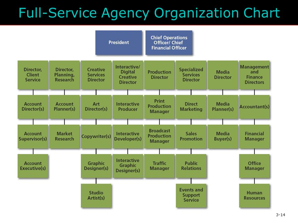 3-14 Full-Service Agency Organization Chart