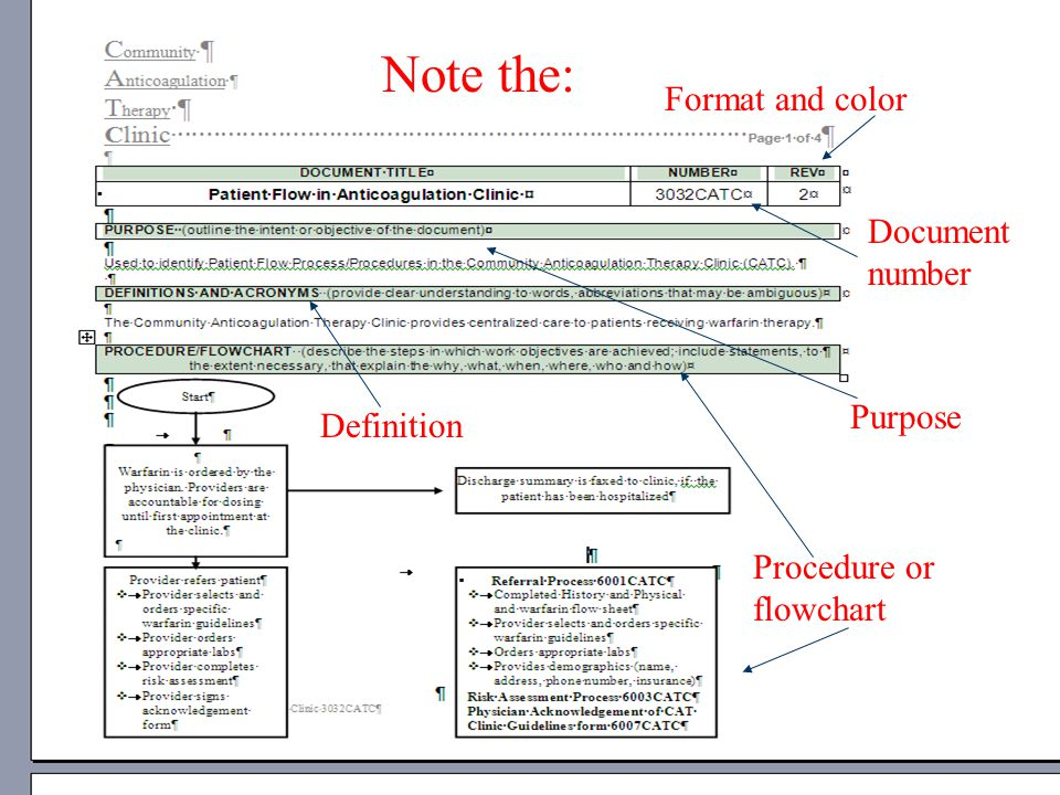 Note the: Format and color Document number Purpose Definition Procedure or flowchart