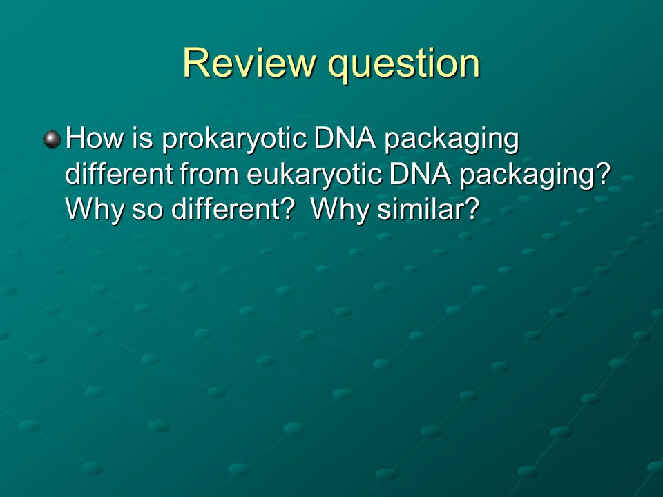 Review question How is prokaryotic DNA packaging different from eukaryotic DNA packaging.