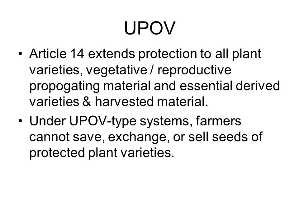 UPOV Article 14 extends protection to all plant varieties, vegetative / reproductive propogating material and essential derived varieties & harvested material.