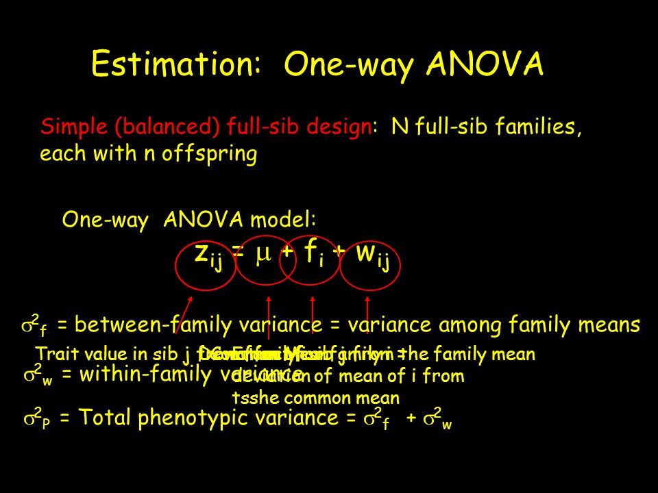 Covariance between members of the same group equals the variance among (between) groups The variance among family effects equals the covariance between full sibs The within-family variance  2 w =  2 P -  2 f,