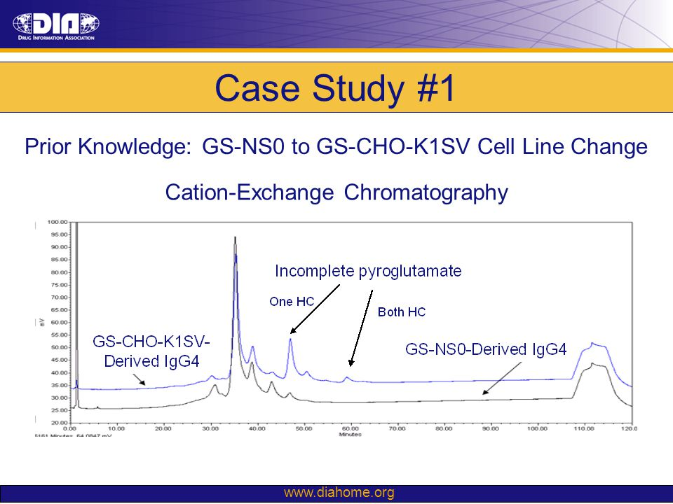 www.diahome.org Case Study #1 Cation-Exchange Chromatography Prior Knowledge: GS-NS0 to GS-CHO-K1SV Cell Line Change
