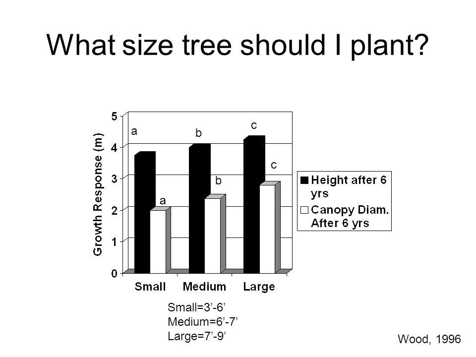 What size tree should I plant? Small=3'-6' Medium=6'-7' Large=7'-9' a b a b c c Wood, 1996
