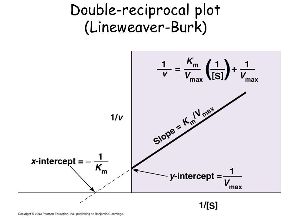 Double-reciprocal plot (Lineweaver-Burk)
