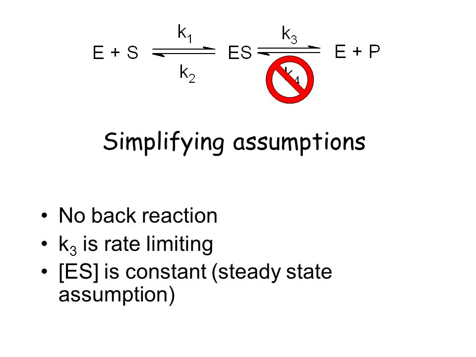 Simplifying assumptions No back reaction k 3 is rate limiting [ES] is constant (steady state assumption)