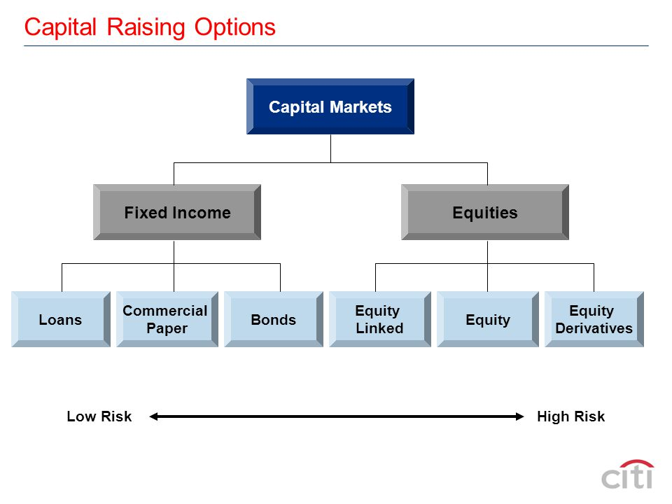 Capital Raising Options Fixed IncomeEquities Commercial Paper LoansBondsEquity Linked Equity Derivatives Low Risk High Risk Capital Markets