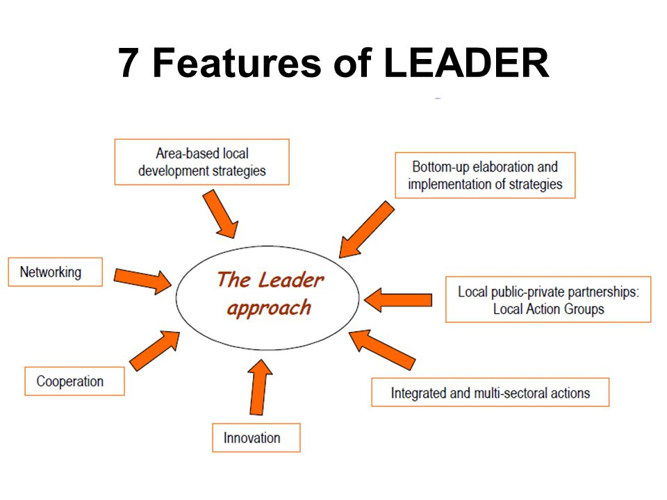 7 Features of LEADER
