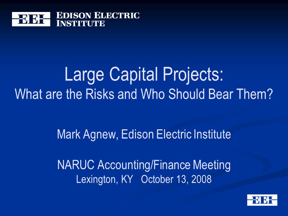 Large Capital Projects: What are the Risks and Who Should Bear Them.