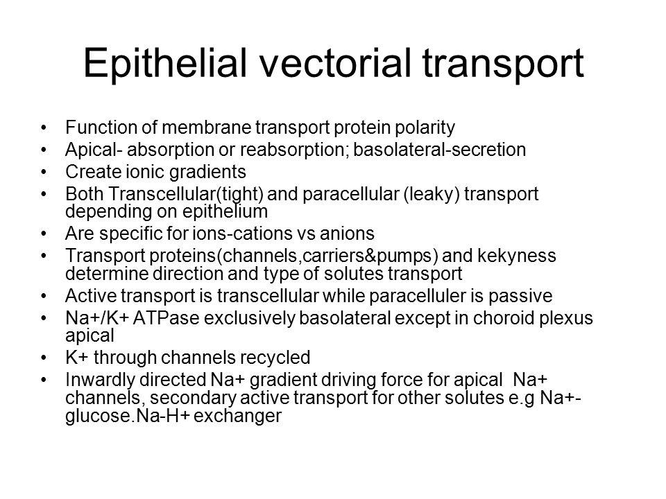 Epithelial vectorial transport Function of membrane transport protein polarity Apical- absorption or reabsorption; basolateral-secretion Create ionic