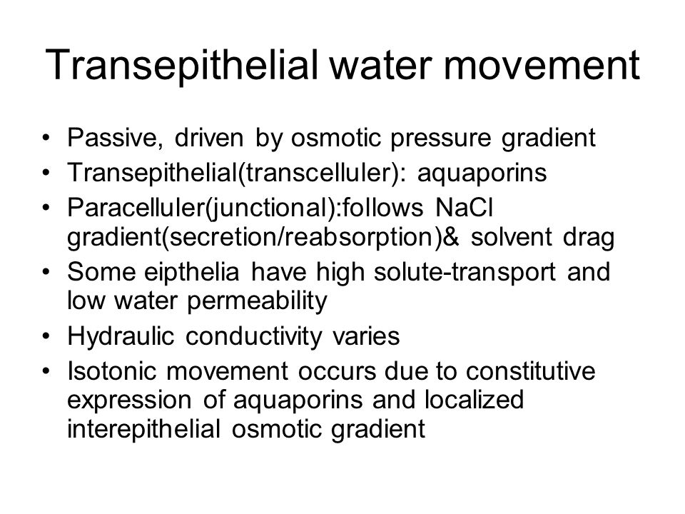 Transepithelial water movement Passive, driven by osmotic pressure gradient Transepithelial(transcelluler): aquaporins Paracelluler(junctional):follows NaCl gradient(secretion/reabsorption)& solvent drag Some eipthelia have high solute-transport and low water permeability Hydraulic conductivity varies Isotonic movement occurs due to constitutive expression of aquaporins and localized interepithelial osmotic gradient